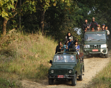 Jeep Safari in Chitwan